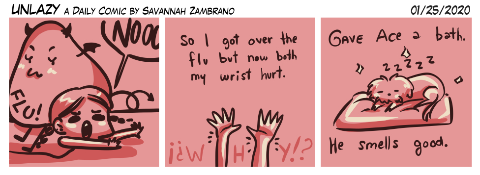 01/25/2020 The flu